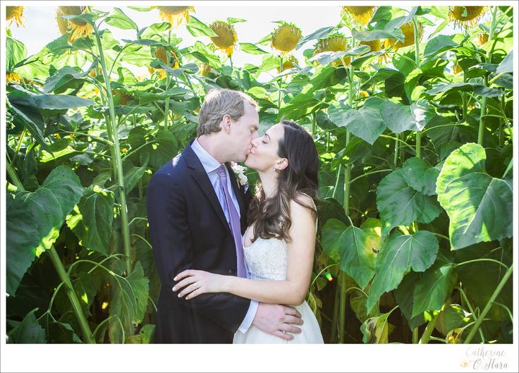 A sneaky kiss in the sunflowers.  www.catherineohara.com  English speaking wedding, elopement, engagement and surprise proposal photographer based in Paris, France
