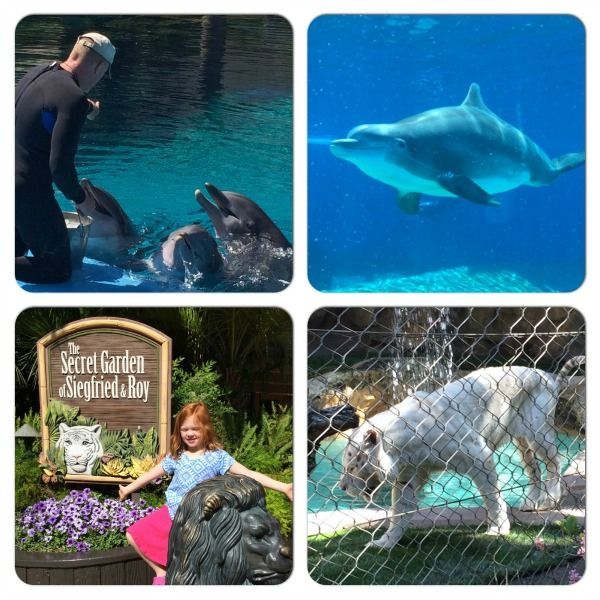 7 Tips for Las Vegas with Kids: Siegfried and Roy's Secret Garden