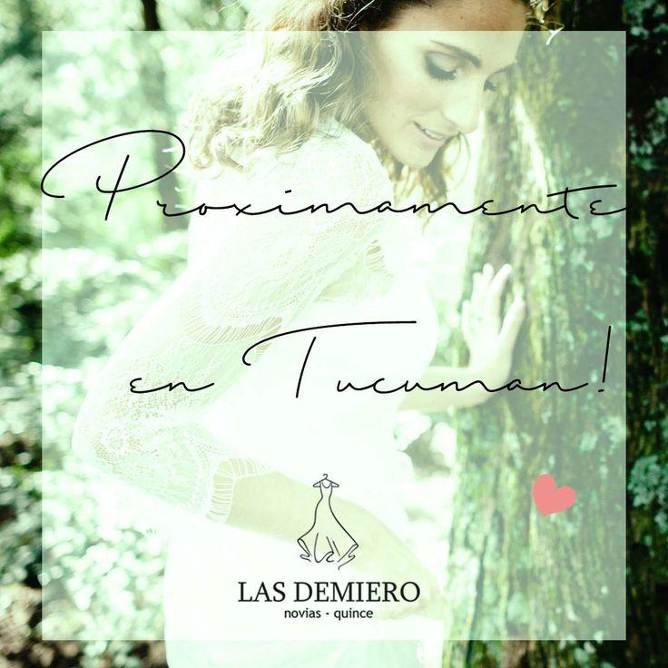 Vamos a estar en  Tucumán ! Más información en : lasdemiero@gmail.com Las Demiero : www.lasdemiero.com https://web.facebook.com/demiero/ #lasdemiero #bodas #novias #vestidodenovia #vestidossirena #vestidosbordados #casamientos #noviavintage
