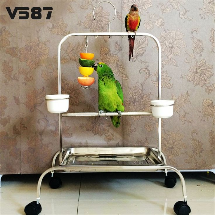 Stainless Steel Small Parrot Toy Meat Kabob Food Holder Stick Fruit Skewer Bird Treating Tool Durable Bird's cage Accessories // FREE Shipping //     Buy one here---> https://thepetscastle.com/stainless-steel-small-parrot-toy-meat-kabob-food-holder-stick-fruit-skewer-bird-treating-tool-durable-birds-cage-accessories/    #catoftheday #kittens #ilovemycat #lovedogs #pup