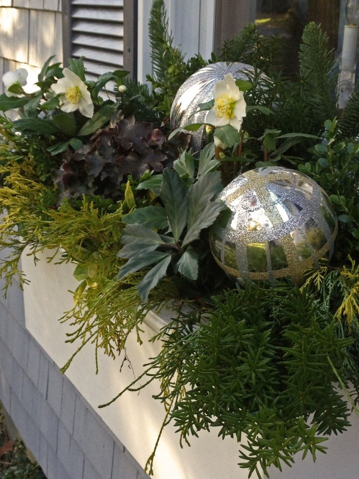 Great foliage is the starting point for your Holiday decorating. Just add bling!
