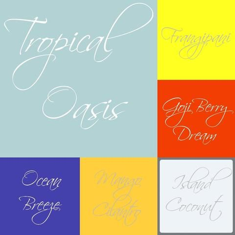 Tropical Oasis Melts Package - Scent from Heaven Soy Melts & Candles