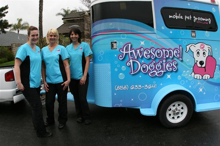17 best ideas about mobile pet grooming on pinterest dog for 7 image salon san diego