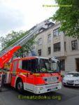 awesome Düsseldorf: Acht Entenküken gerettet