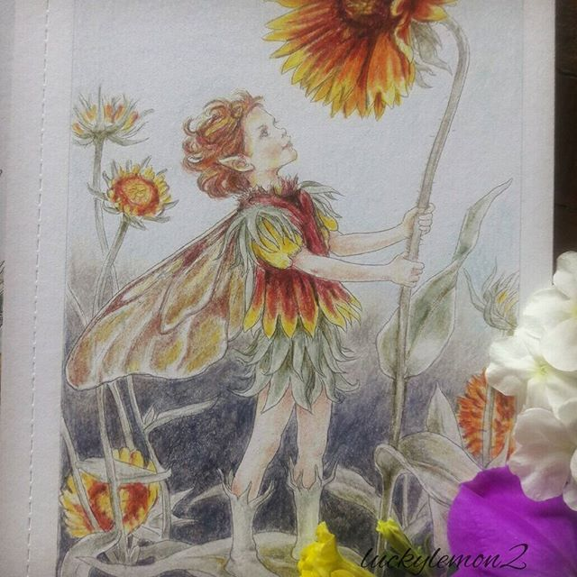 こちらも交換便としてお送りしたものです色白の美少年 これ、男の子ですよね〜?! * #ぬりえ #ぬりえブック #おとなの塗り絵 #おとなのぬりえ #大人の塗り絵 #塗り絵本 #コロリアージュ #シシリーメアリーバーカー #庭の花の妖精 #水彩色鉛筆 #cicelymarybarker #flowerfairies #flowerfairy #colour #coloringbook #coloring #coloringbookforadults#colorful #coloriageantistress #coloriagepouradultes #coloriage #coloriages #coloriagepouradulte #coloriageadulte #secretgardencoloringbook #johannabasford #beautifulcoloring #adultcoloringbook #adultcoloring #adultcoloringbooks