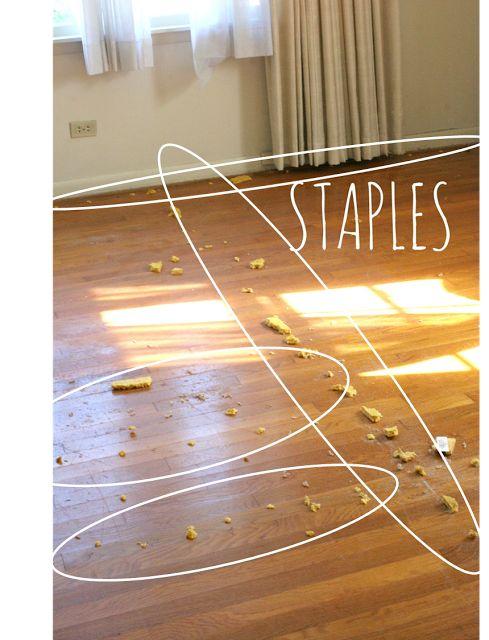 staples in hardwood floor remove 2