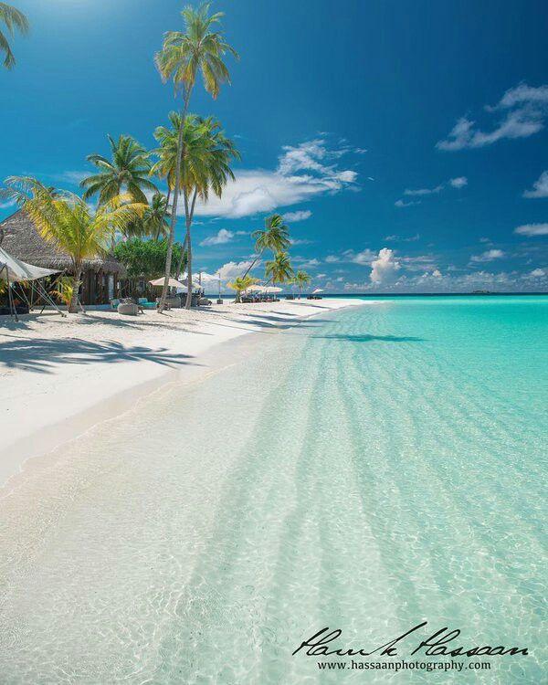 Maldives ♡♡♡♡♡ http://www.jetradar.com/?marker=126022 https://www.hotelscombined.fr/Place/Corse.htm?a_aid=150886