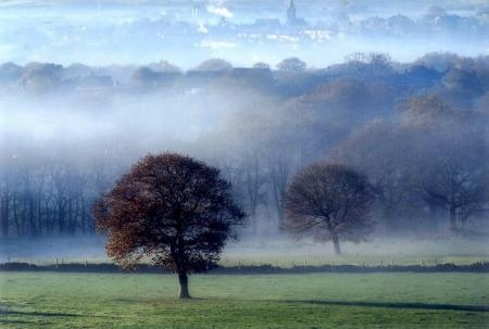 Judy Woods, Norwood Green, Bradford, by Michael Waine, of Wibsey, Bradford
