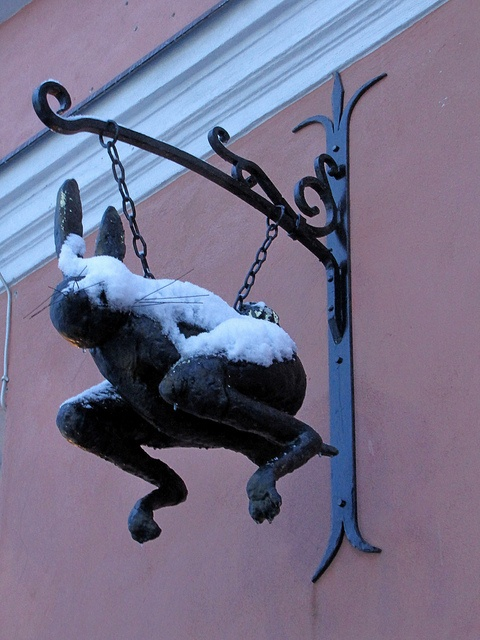Fast Rabbit Restaurant, Talinn, Estonia