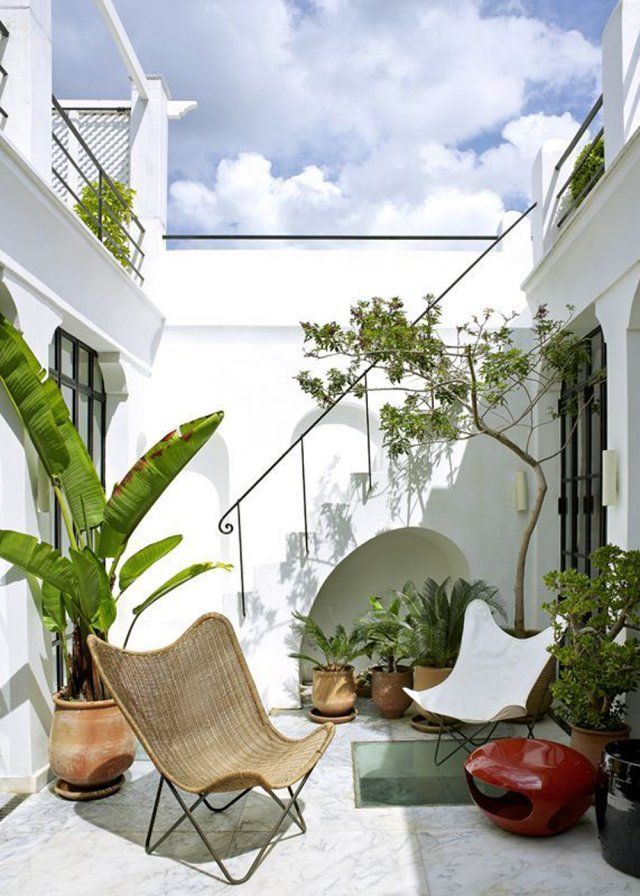 Un petit patio aménagé comme un jardin