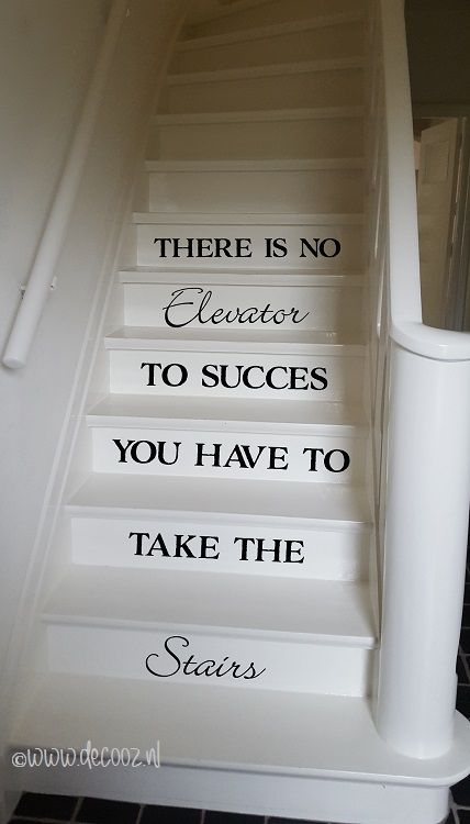 Trapsticker There is no elevator to success, you have to take the stairs