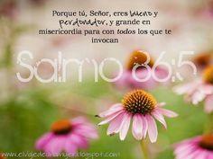 Salmo 86:5