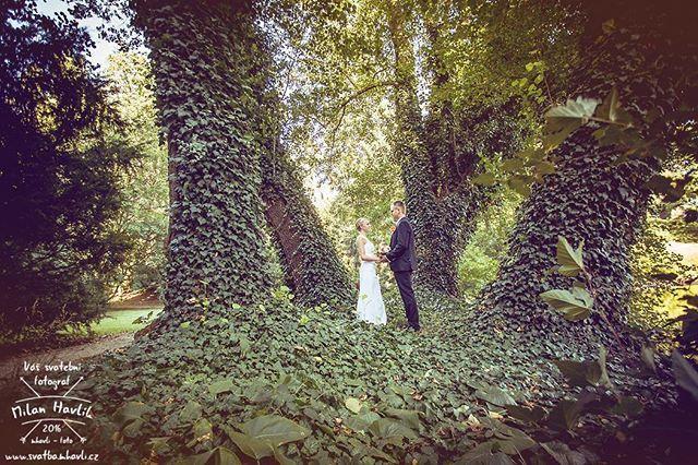 """Dlužím Vám ještě ukázku z jedné srpnové svatby. Parádní prostředí dačického zámeckého parku a úžasní Ivana a Lukáš. Díky že jsem mohl být """"u toho""""! #svatba #wedding #svatebnifoto #weddingphoto #svatebnifotograf #weddingphotographer #czechwedding #czech #czechphotographer #czechweddingphotographer #nevesta #zenich #dacice #park #zamek #zamekdacice #brectan #mamsvojipracirad #fotiltomilan  Více svatebních fotek najdete na: www.instagram.com/mhavlifoto"""