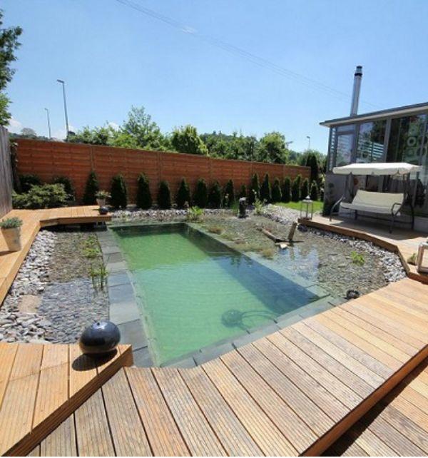 Diy natural swimming pool this diy pool is certainly a for Natural swimming pool design diy