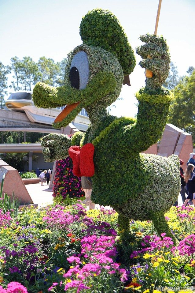 Epcot International Flower and Garden Festival - 2013 Epcot Flower and Garden Festival - Donald topiary