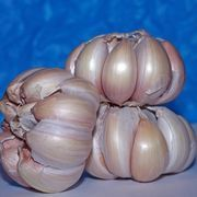 How to Plant Garlic in Washington State | eHow
