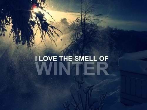 people think im crazy when i say i can smell winter nothing beats it!