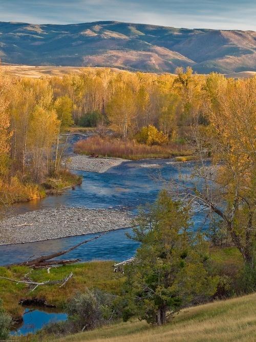 Autumn on the Gallatin - near Bozeman, MT