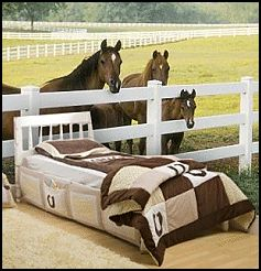 Horse Theme Bedroom Decorating Ideas   Girls Horse Themed Bedrooms     Horse  Wall Murals   Pony Theme Bedroom Decorating Ideas   Cowgirl Theme Bedroom  Horse ...