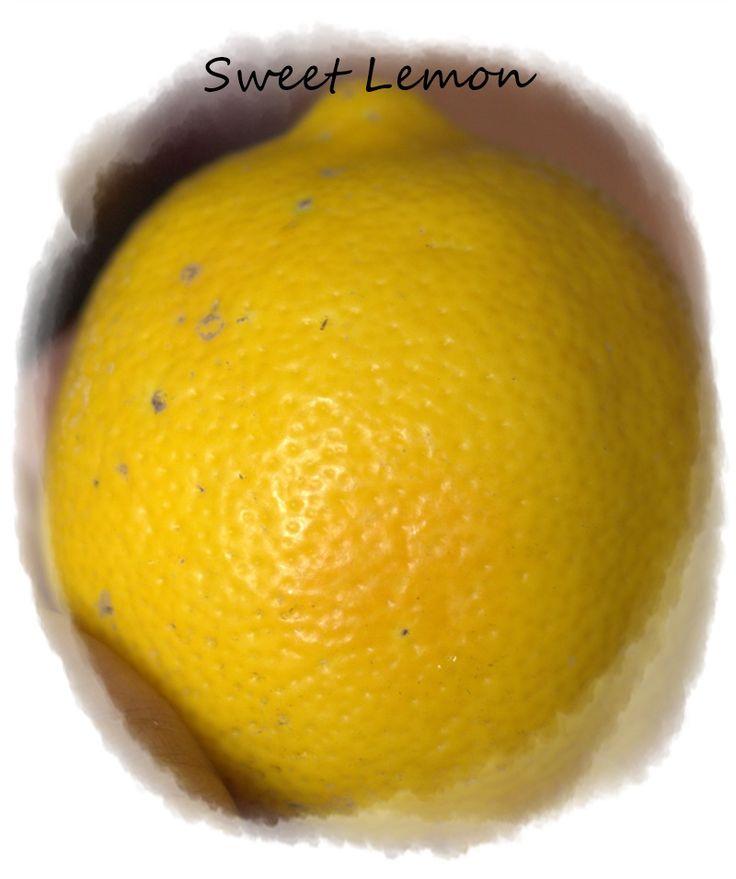 Sweet lemon from a friend's friend's garden