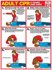 CPR FOR ADULTS Instructional Wall Chart Poster (2011 AHA Guidelines) - Available at www.sportsposterwarehouse.com