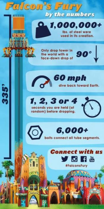 Falconu0027s Fury By The Numbers | Busch Gardens Tampa