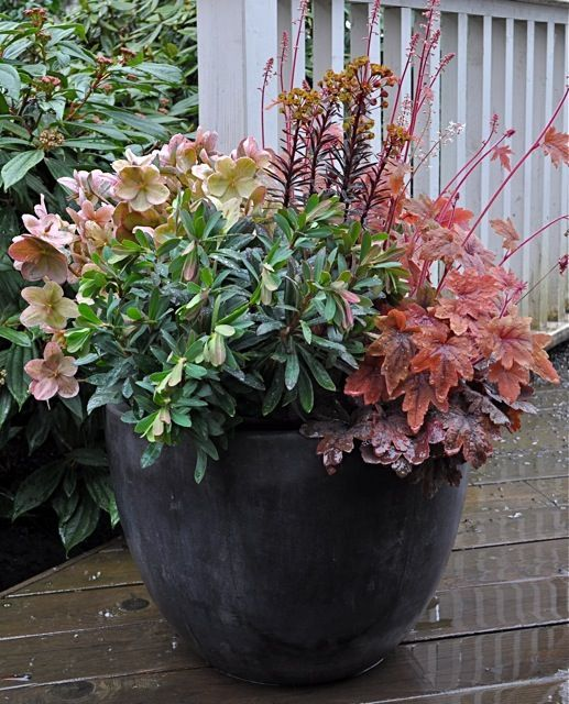164 best images about perennial containers on pinterest for Perennial container garden designs