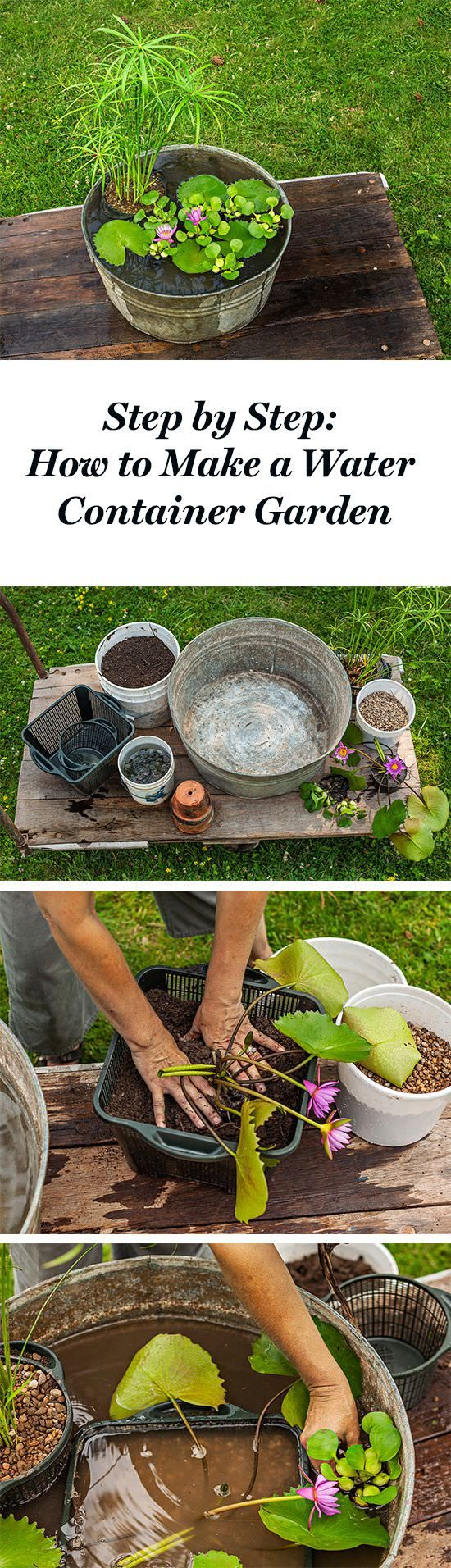 If you wish to create a water garden but don't have space then it's a brilliant idea to start it in a container. Making this container water garden is easy and all you need is to follow a few instructions!