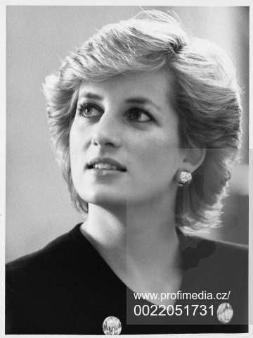 April 7 1987 Diana, Patron, National Rubella Council, attends a luncheon at Marlborough House to mark World Health Day