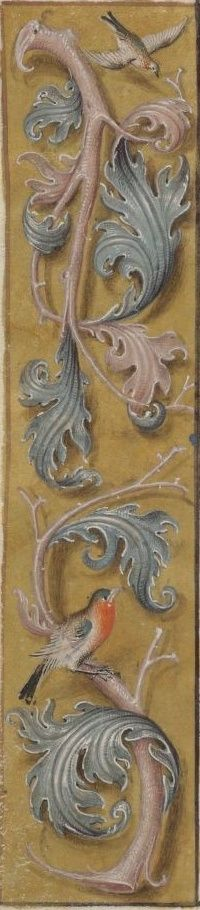 Floral borders from a manuscript Book of Hours, ca. 1505