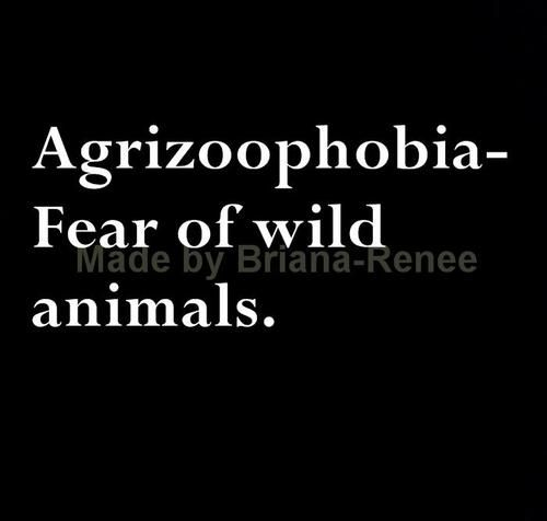 What is the opposite, love of wild animals? Because, that is what I have..