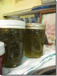 jalapeno jelly... maybe my favorite thing that I can???