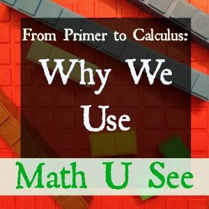 Of all the curriculum that we have used over our ten years of homeschooling, Math U See is one program that I can't imagine homeschooling without.