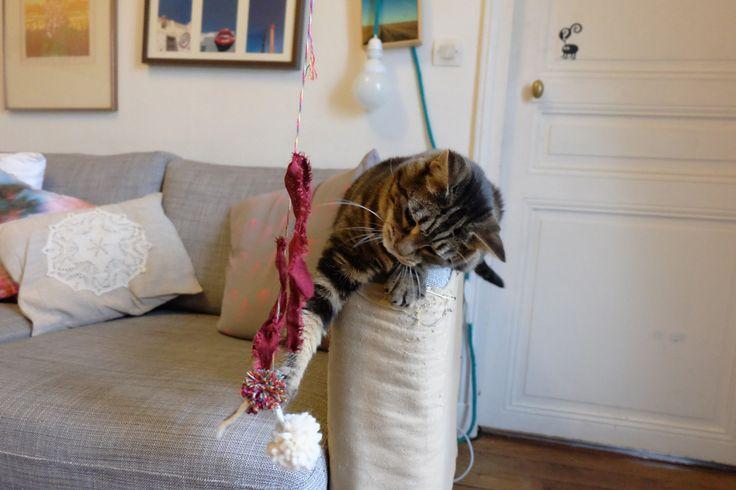 Les 25 meilleures id es de la cat gorie jouets pour chats en exclusivit sur pinterest jouets - Tuto arbre a chat ...