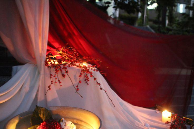 The Oriental Garden, 2013. sookmyung kimjeehye: displaydesign