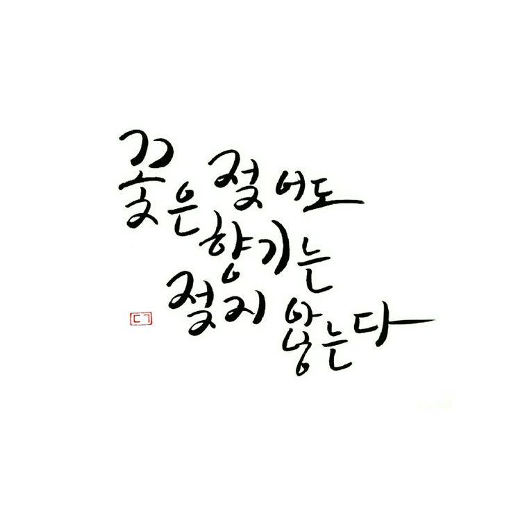 #캘리그라피 #calligraphy #handlettering by Dangeum Jung