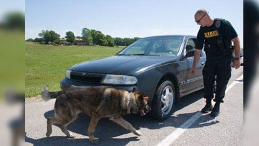 Here's What You Need to Know About Tuesday's Supreme Court Ruling on Drug Sniffing Dogs During Traffic Stops - PINAC