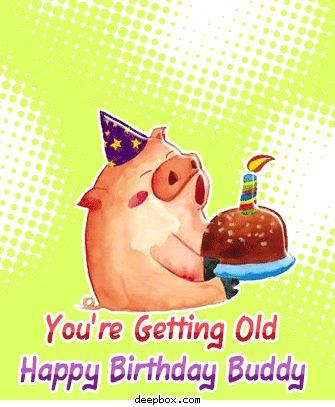 You're Getting Old, Happy Birthday Buddy happy birthday happy birthday wishes happy birthday quotes happy birthday images happy birthday pictures happy birthday gifs