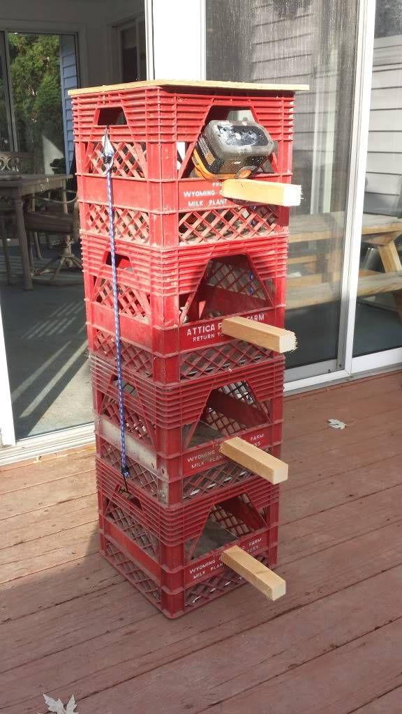 Plastic Milk Crates as nest boxes? - Page 3 - Pigeon-Talk   Backyard
