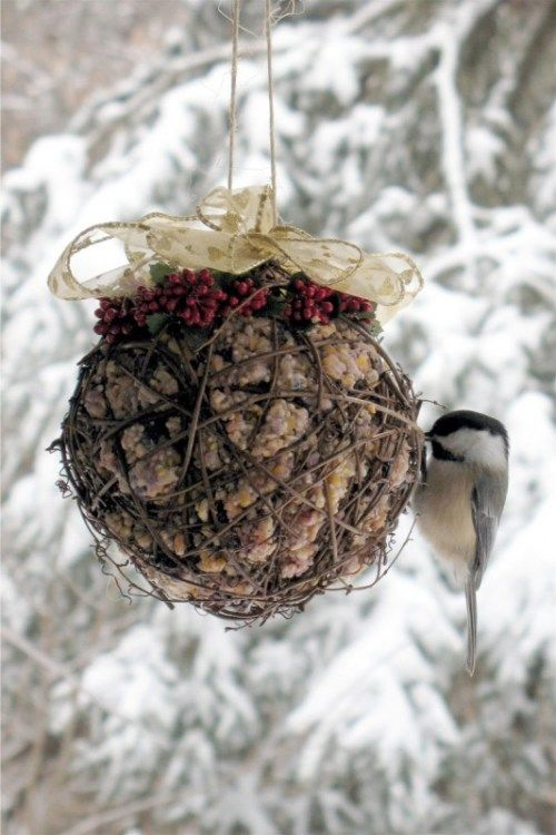 DIY suet feeder for birds- a great item for your feathered friends in the winter.
