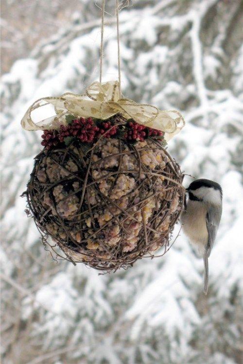 Suet FeederSuet Ball, Birds Feeders, Bird Feeders, Pretty Suet, Suet Feeders, Gardens Art, Vines Ball, Hostess Gift, Feathers Friends