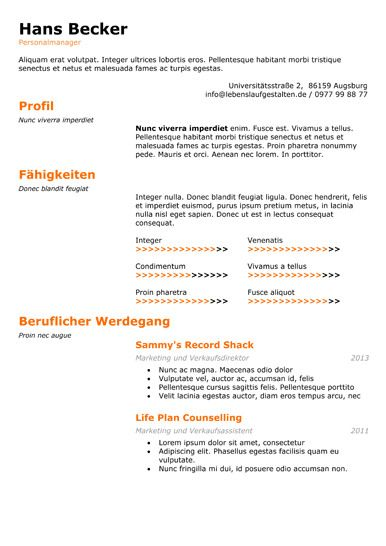 Best Resume Format Images On   Cv Format Resume