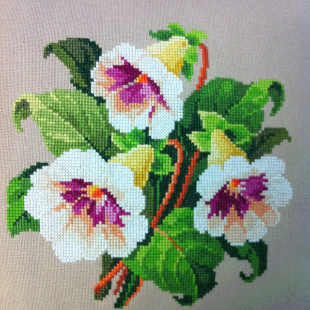 """Gloxinia Bouquet Cross Stitch. Pattern circa 1850 Germany. Berlin Woolwork. 11"""" x 11"""" Stitched by Lisa in June 2012 Won 2nd place at the Gesneriad Convention in Seattle Washington, July 2012"""