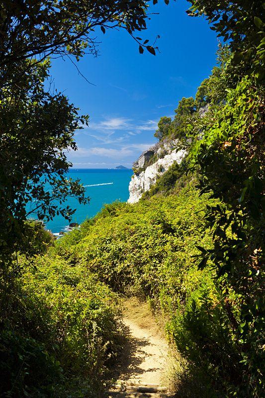 Parco Naturale Regionale di Montemarcello-Magra, Monte Marcello, Punta Blanca, Liguria_ Italy
