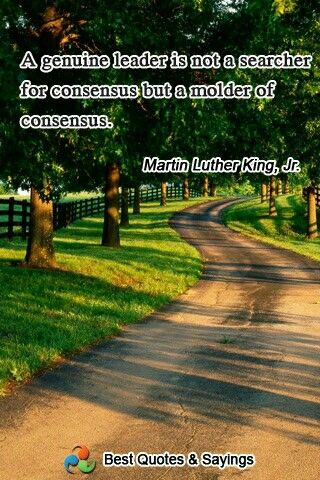 Quote from Martin Luther King