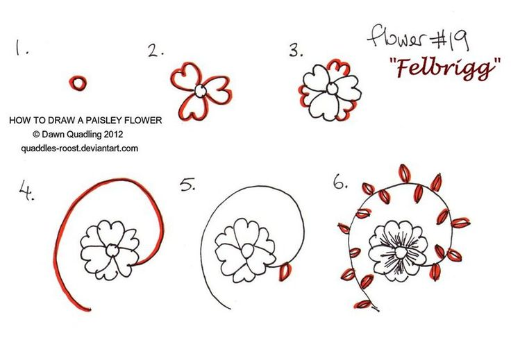 17 best images about how to zentangle on pinterest Teach me how to draw a flower