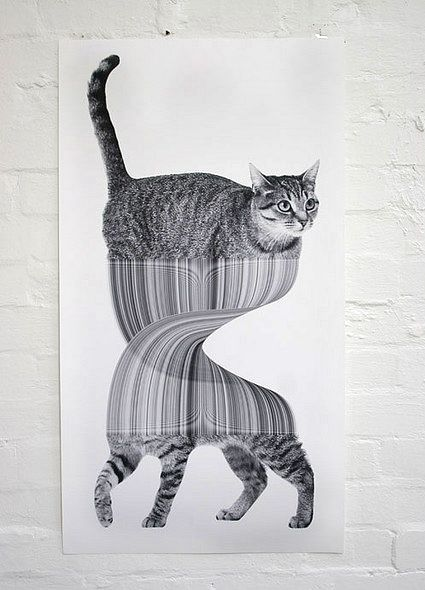 drawing by jonathan zawadaCat Art, Jonathanzawada, Graphics Design Posters, Yellow Bricks Roads, Cat Illustration, Jonathan Zawada, Trippy, Kitty, Drawing