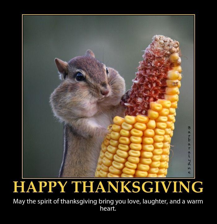 aa7b85d402b815dd2715db63279f2f90 happy thanksgiving canada thanksgiving feast 51 best thanksgiving images on pinterest thanksgiving holiday
