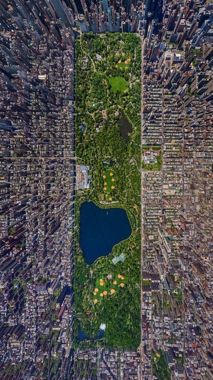 Central Park, Manhattan, NYC    Did you know all of the park is man-made and all of the water can be turned on and off manually?