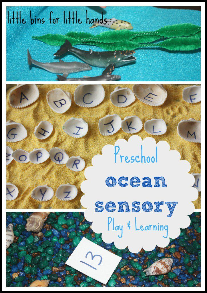 Preschool ocean theme using sensory bins and sensory play. Continuing our study of whales and water in our ocean theme preschool week.
